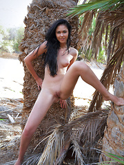 With her stunning body wityh perfectly tanned skin, surrounded by palm fronds, Macy B makes the ultimate tropical babe.